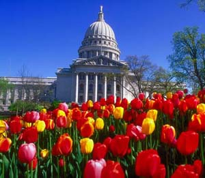State of Wisconsin Capitol with tulips in bloom